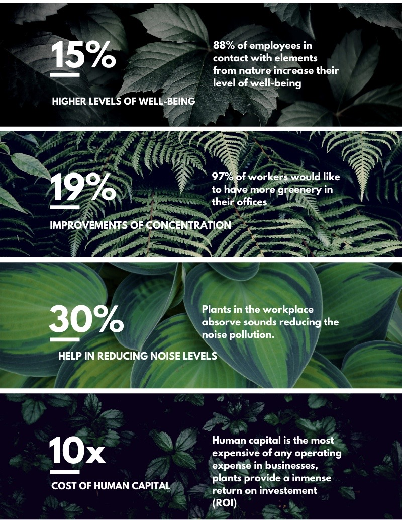 Infographic: Connecting with nature to increase productivity